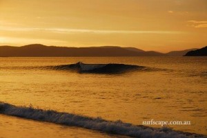 Surf art by Surfscape